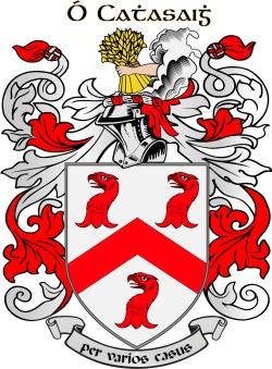 CASEY family crest
